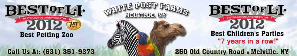 Best animal farm and petting zoo on Long Island