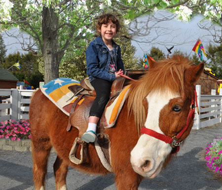 All kids love to ride a pony on Long Island